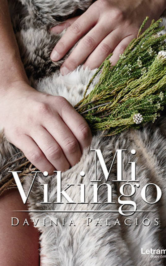 Mi-vikingo.jpg