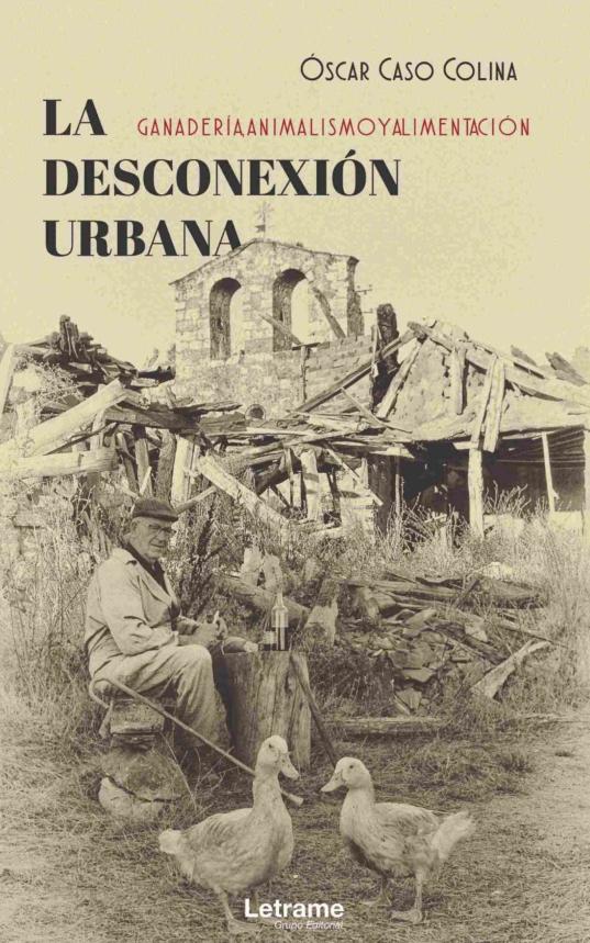La-desconexión-Urbana