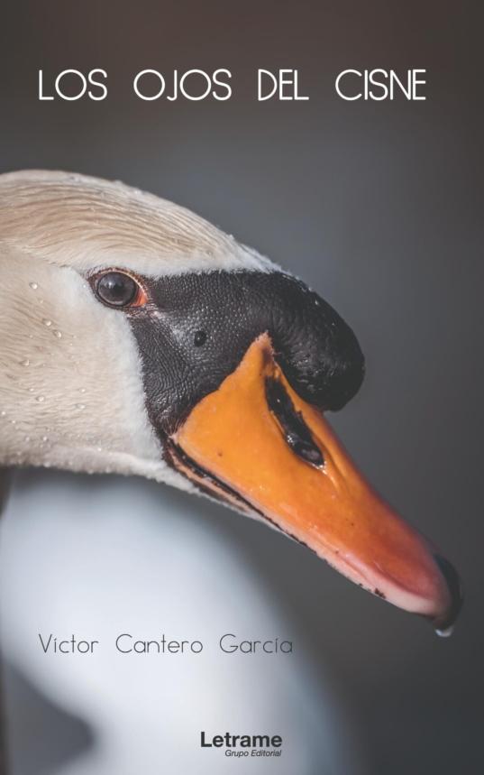 Los ojos del cisne portada